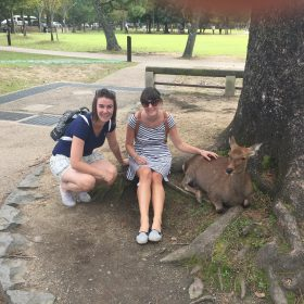 Things to do in Nara