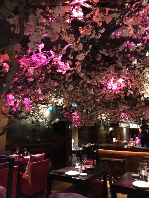 japanese restaurant in central london
