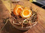Nest Restaurant Hackney